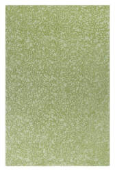 Company C Crackle 10310 Grass Area Rug