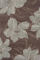 Momeni Transitions Ts-15 Brown Area Rug