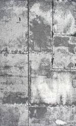 Nuloom Power Loomed Estrella Grey Area Rug