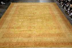 Org 16/18 Antiqued V-1681 Lime - Ivory Area Rug