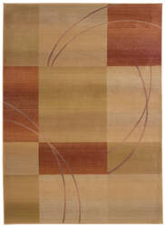 Oriental Weavers Generations 1608d  Area Rug