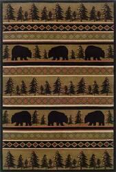Oriental Weavers Hansen 1066A  Area Rug