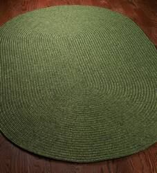 Safavieh Braided BRD315A Green Area Rug