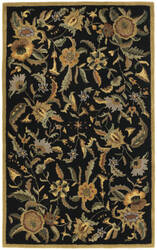 St. Croix Traditions Pt32 Black Area Rug