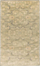Surya Ainsley AIN-1013 Gray / Green Area Rug