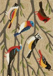 Trans-Ocean Frontporch Birds 1440/44 Multi Area Rug
