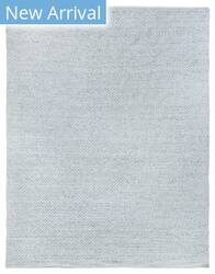 Exquisite Rugs Rialto Flatwoven 3957 Light Gray Area Rug
