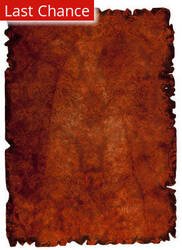 Rugstudio Sample Sale 66869R Rust Area Rug