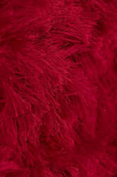 Amer Elements Neon Red Area Rug