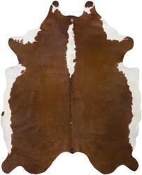 Surya Abington Wilde Dark Brown - White Area Rug