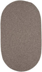 Capel Candor 865 Chestnut Area Rug