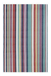 Company C Canopy Stripe 10293 Multi Area Rug