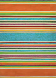 Couristan Covington Sherbet Stripe Multi Area Rug