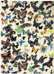 Designers Guild Butterfly Parade 175989 Opalin Area Rug
