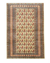 Eastern Rugs Pak-Pasley X29949 Ivory Area Rug
