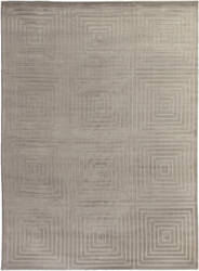 Exquisite Rugs Embossed Hand Woven Silver Area Rug
