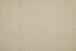 Hagaman Simplicity Sisalcord Almond Area Rug