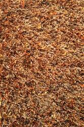 Loloi Dion Shag DS-01 Spice Area Rug