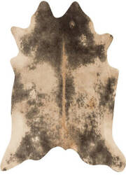 Loloi Grand Canyon Gc-13 Beige - Ash Area Rug