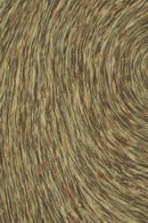 Loloi Rowan Rw-04 Gold / Multi Area Rug