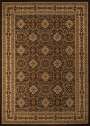 Momeni Royal Ry-01 Brown Area Rug