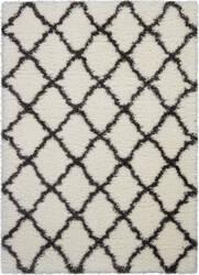 Nourison Ultra Plush Shag Ulp02 Ivory - Charcoal Area Rug