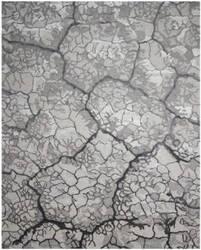 Nourison Divine Div01 Charcoal Area Rug
