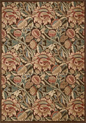 Nourison Graphic Illusions GIL-10 Brown Area Rug