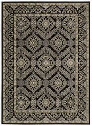 Nourison Graphic Illusions Gil24 Black Area Rug