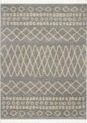 Nourison Moroccan Shag Mrs02 Silver Area Rug