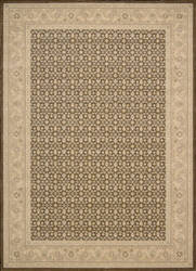 Nourison Persian Empire PE-26 Chocolate Area Rug