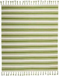 Nourison Solano Sln01 Ivory - Green Area Rug