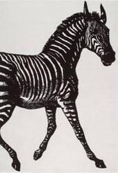 Nuloom Thomas Paul Power Loomed Zebra Black & White Area Rug