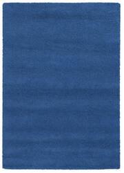 PANTONE UNIVERSE Focus 4849g True Blue Area Rug
