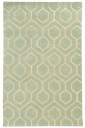 PANTONE UNIVERSE Optic 41106 Green Tint Area Rug