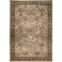 Palmetto Living Aria 8208 Persian Forest Bisque Area Rug