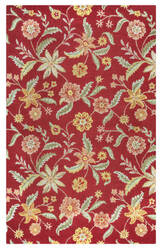 Rizzy Country Ct-1585 Red Area Rug