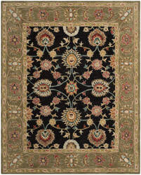 Safavieh Anatolia An561c Black / Green Area Rug