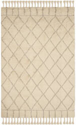 Safavieh Casablanca Shag Csb725b Ivory - Light Grey Area Rug
