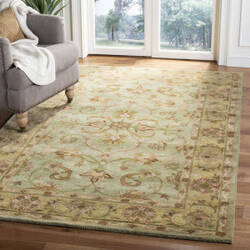 Safavieh Heritage HG811A Green - Gold Area Rug