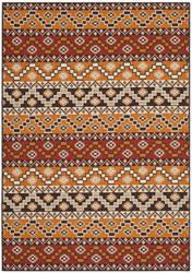 Safavieh Veranda VER095-0332 Red / Chocolate Area Rug
