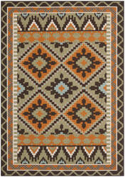 Safavieh Veranda Ver096-742 Green / Terracotta Area Rug
