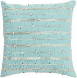 Surya Accretion Pillow Act-001