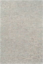 Surya Newcastle Ncs-2310  Area Rug