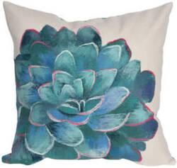 Trans-Ocean Visions Iii Pillow Succulent 4316/12 Cream Area Rug