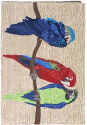 Trans-Ocean Frontporch Parrots 1492/44 Bright Area Rug
