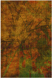 Trans-Ocean Havana Crackle 8847/09 Amber Area Rug