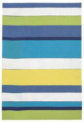 Trans-Ocean Visions Ii Garden Stripe Blue Area Rug