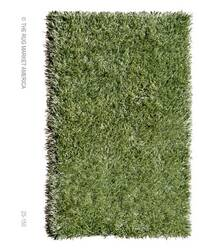The Rug Market America Resort Grazin' In The Grass 25150 Green Area Rug